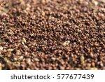 seeds in the sun | Shutterstock . vector #577677439