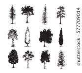 trees sketch set  hand drawing... | Shutterstock .eps vector #577709014