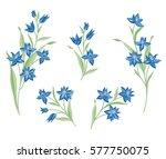 floral bouquet set. wild ... | Shutterstock .eps vector #577750075