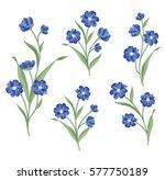 floral bouquet set. wild ... | Shutterstock .eps vector #577750189
