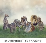 group of wild animals on the...   Shutterstock . vector #577773349