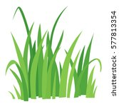 grass icon. cartoon... | Shutterstock .eps vector #577813354