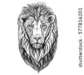 hand drawn sketch of lion head. ... | Shutterstock .eps vector #577816201
