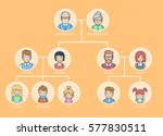 linear flat family tree... | Shutterstock .eps vector #577830511