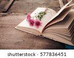 vintage novel books with... | Shutterstock . vector #577836451