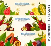 exotic tropical fruit banner... | Shutterstock .eps vector #577872361