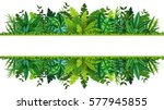illustration of a tropical... | Shutterstock .eps vector #577945855