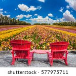 convenient red chairs on a... | Shutterstock . vector #577975711