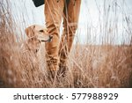 hiker and dog standing in high... | Shutterstock . vector #577988929