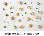 Stock photo assorted roses heads 578012725