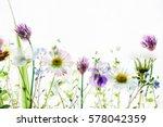 spring flowers | Shutterstock . vector #578042359