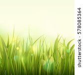 green grass. colorful sunset or ... | Shutterstock .eps vector #578085364