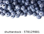 blueberries isolated on white... | Shutterstock . vector #578129881