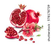 fruit pomegranate and pink... | Shutterstock .eps vector #578178739