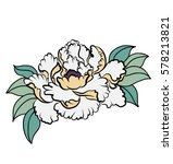 hand drawn peony flower for... | Shutterstock .eps vector #578213821