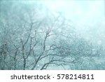 winter forest blurred... | Shutterstock . vector #578214811