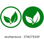 natural branch icon with green... | Shutterstock . vector #578275339