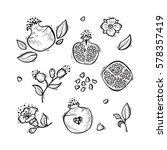 hand drawn doodle fruits.... | Shutterstock .eps vector #578357419