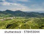vineyards of prosecco ...