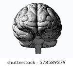 monochrome engraving brain... | Shutterstock .eps vector #578589379