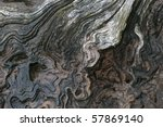an old tree stump marked and... | Shutterstock . vector #57869140