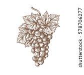 grapes engraving vector... | Shutterstock .eps vector #578706277