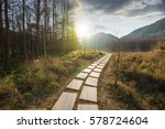 sunset in the woods corridor | Shutterstock . vector #578724604