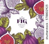 fig fruit vintage design... | Shutterstock .eps vector #578802925