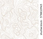 landscape geodesy topographical ... | Shutterstock .eps vector #578810965