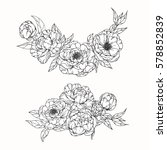 vector collection set of peony... | Shutterstock .eps vector #578852839