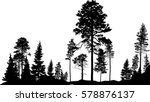 Stock vector illustration with high pine in fir trees forest isolated on white background 578876137