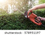Gardener using an hedge clipper in the garden - stock photo
