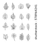autumn leaves vector set... | Shutterstock .eps vector #578964241