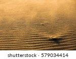 Sandy Beach At Sandscale Haws...