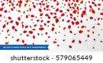 flowers petals confetti falling ... | Shutterstock .eps vector #579065449