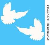 pigeons. wedding doves. a pair... | Shutterstock .eps vector #579079465