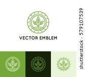 vector logo design template in... | Shutterstock .eps vector #579107539