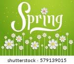 elegant vector spring... | Shutterstock .eps vector #579139015