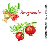 pomegranate branch with flowers ...   Shutterstock . vector #579141385