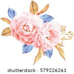 floral bouquet of roses  blue...   Shutterstock . vector #579226261