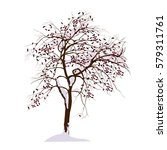 the apple tree in the winter... | Shutterstock .eps vector #579311761