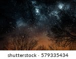 night stars sky through trees | Shutterstock . vector #579335434