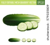 cucumber on white background.... | Shutterstock .eps vector #579335809