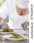 professional chef prepare meat... | Shutterstock . vector #579336919