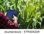 farmer using digital tablet... | Shutterstock . vector #579404209