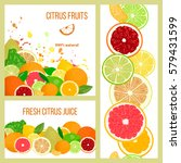 citrus juicy fruits. label... | Shutterstock .eps vector #579431599