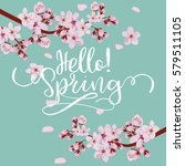 spring season background  pink... | Shutterstock .eps vector #579511105