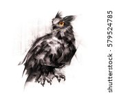 painted an owl sitting on a... | Shutterstock . vector #579524785