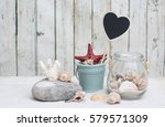 background with shells   Shutterstock . vector #579571309