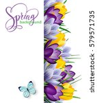 spring background with blooming ... | Shutterstock .eps vector #579571735